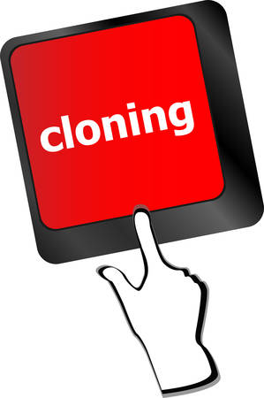 cloning: cloning keyboard button on computer pc  Illustration