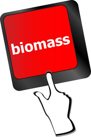 biomass: Keyboard keys with biomass word button