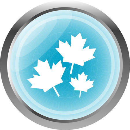 Maple leaf icon on web button isolated on white Illustration