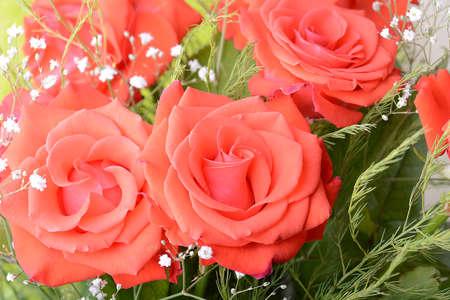 bouquet fleurs: Bouquet de roses rouges, fleurs bouquet Banque d'images