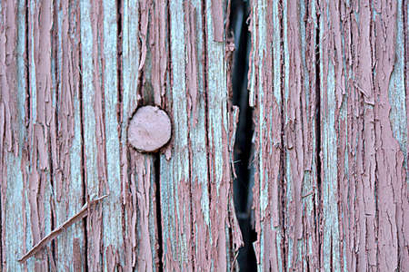 wood plaque: old wood plaque texture or background