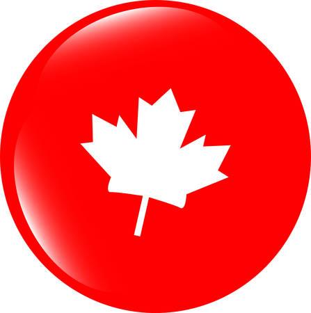 maple leaf icon: vector maple leaf icon glassy web button
