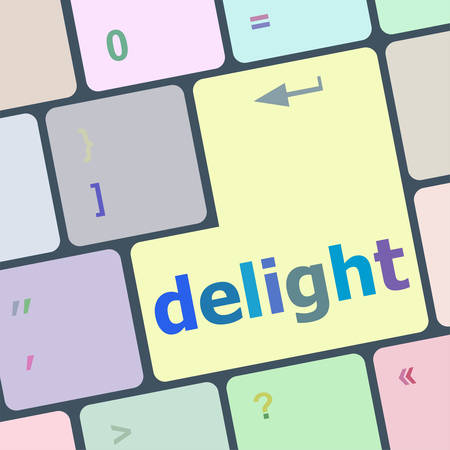 qwerty: delight button on computer pc keyboard key vector illustration Illustration