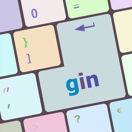 gin: gin word on keyboard key, notebook computer button vector illustration Illustration