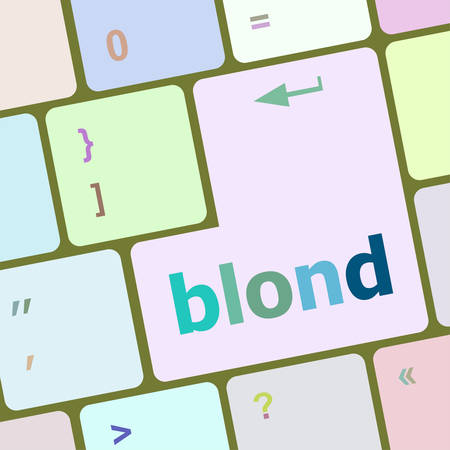 computer button: blond word on keyboard key, notebook computer button vector illustration