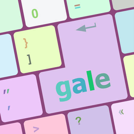 gale: gale word on keyboard key, notebook computer button vector illustration Illustration