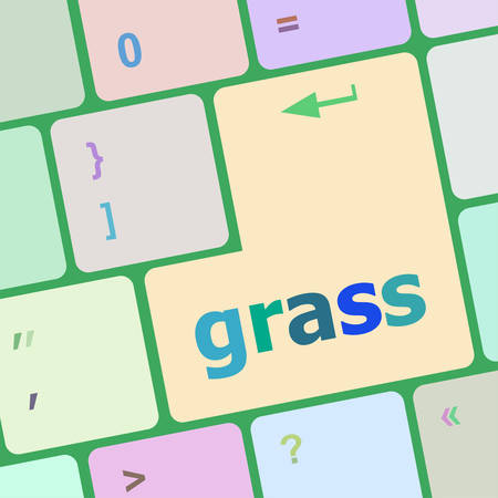 button grass: Computer keyboard button with grass button vector illustration