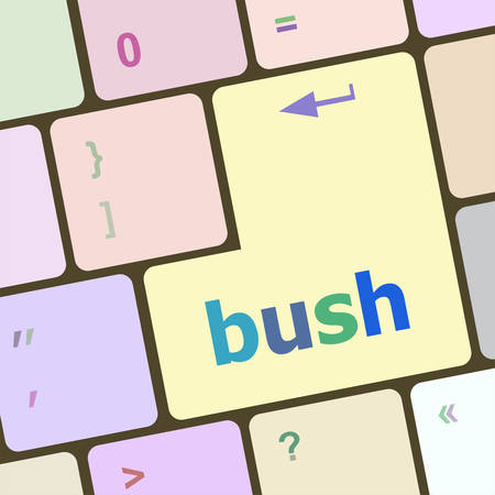 bush: bush word icon on laptop keyboard keys vector illustration