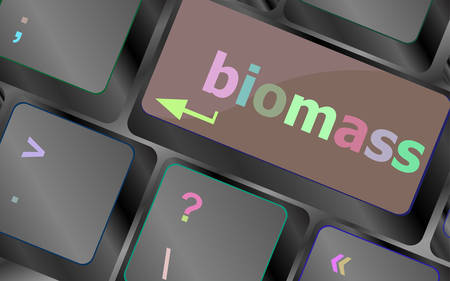 biomass: Keyboard keys with biomass word button vector keyboard key. keyboard button. Vector illustration Illustration