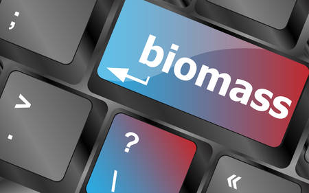 biomass: Keyboard keys with biomass word button vector, keyboard keys, keyboard button