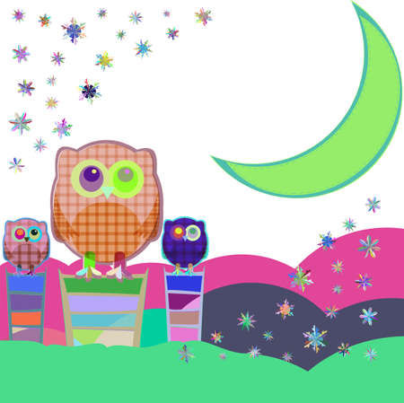 nocturnal: Owl and moon, nocturnal sky