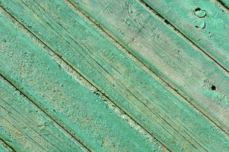 Natural green wood texture with an array of knots and lines.