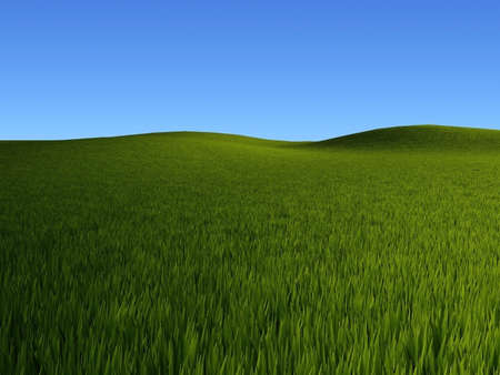 Rendered grass fields landscape Stock Photo - 2612555