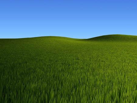 Rendered grass fields landscape Stock Photo - 2612555