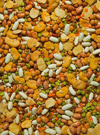 Plenty of colorful beans, soyas, lentilles and other peas.