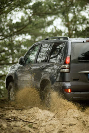 4x4 car on sandy road in the forest. Stock Photo