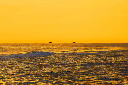 horison: Seascape in the morning yellow lights. Two ships on horison.