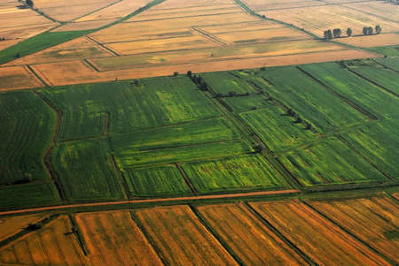in fields: Aerial view of the farming  land. Cereal fields below. Stock Photo
