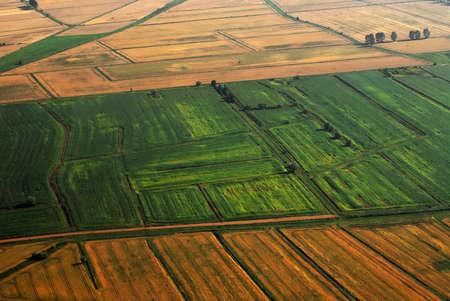 Vista a�rea de las tierras de cultivo. Campos de cereal m�s abajo.  Foto de archivo