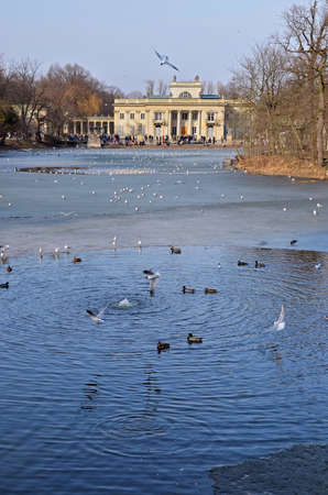 lazienki: South facade of the Royal Palace in Warsaw Lazienki park. Winter view with frozen lake and many flying birds. People faces not recognisable.