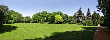 begining: City park in the begining of summer  Very wide view
