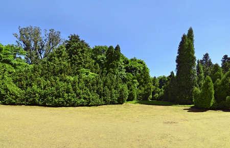begining: Citt� parco all'inizio di angolo, vista dell'estate largo