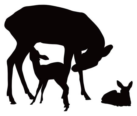 fawn: black and white illustration of deer family. Mother feeding cattle. Illustration