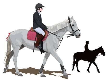 White race horse and lady jockey in uniform. Color  illustration.