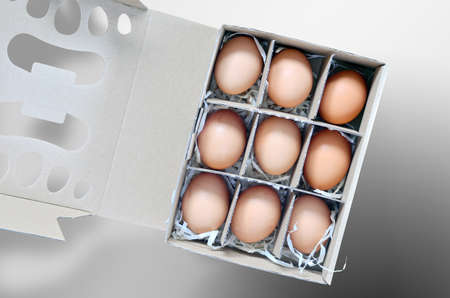 Nine eggs in the box. There is cut out path for the box. Stock Photo