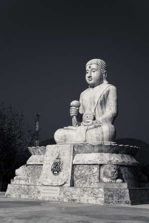 chinese buddha: The Chinese Buddha