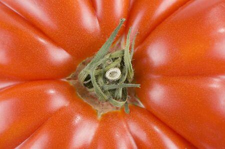 heirloom: Heirloom tomato