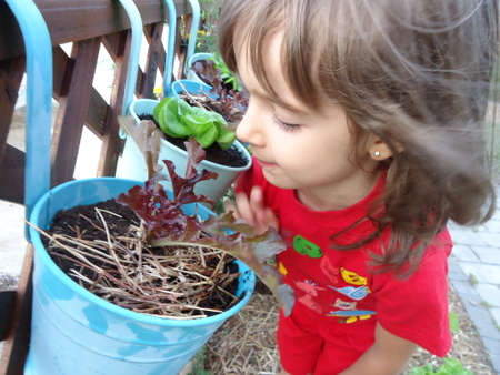 Happy little girl admiring her salad pots Stock Photo