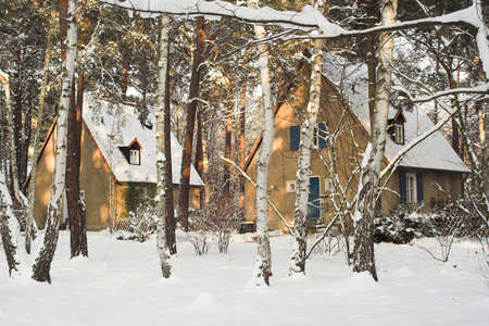 pitched roof: houses in winter