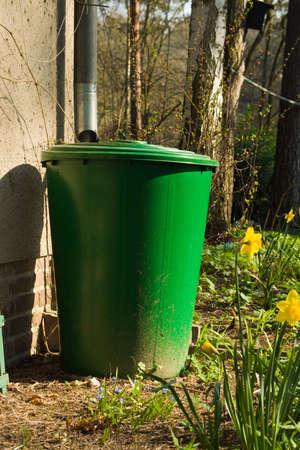 rain barrel photo