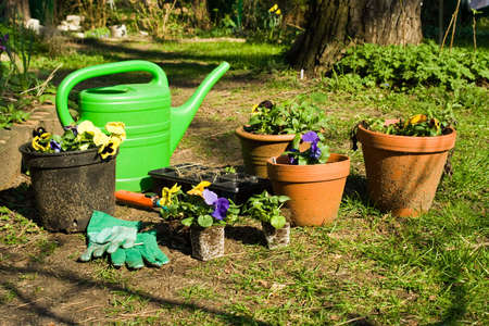 gardening Stock Photo - 2102035