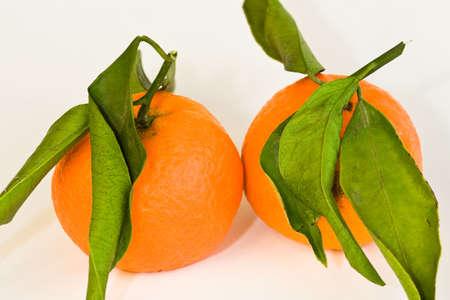citrus aurantium: clementines Stock Photo