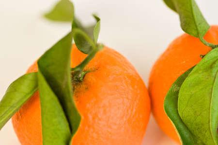 citrus aurantium: Clementines
