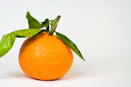 citrus aurantium: Clementine Stock Photo