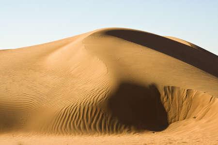Wahiba sands, Oman photo