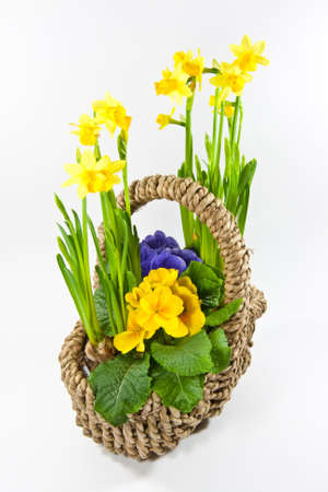 basket with flowers photo