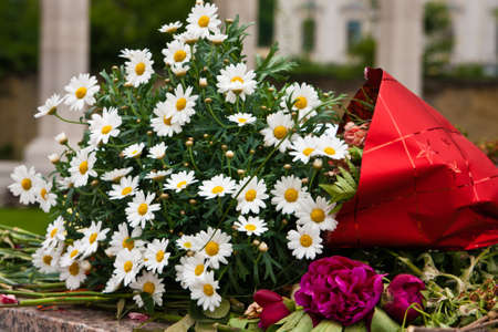 Blumenstrauß Standard-Bild - 9135039