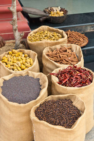 Spices in Kerala, India photo