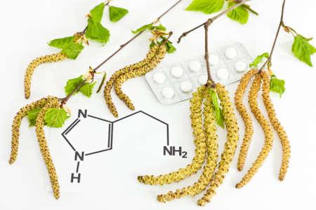 antihistamine: Allergic rhinitis with birch blossom