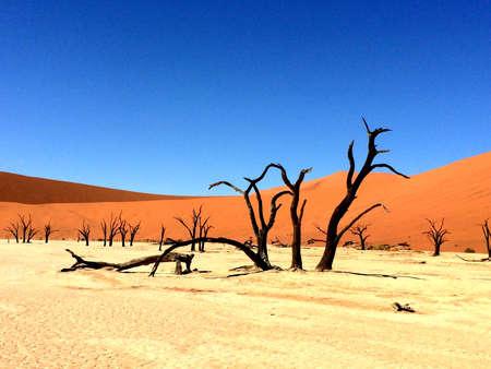 Dunes of Sossusvlei in Namibia