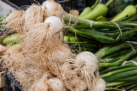 spring onions on the market Stock Photo