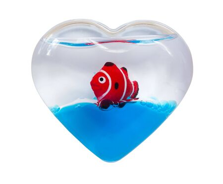 Red striped small fish in an aquarium in the form of heart symbolising love to the sea, isolated on white with path Stock Photo - 4742988