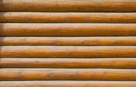 log wall: pine log wall of the house
