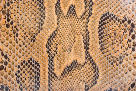 camouflage skin: natural python skin texture - background Stock Photo