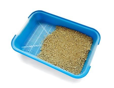 vegetable tray: Blue cat litter box isolated on white