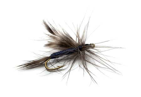 trout fishing: Fluffy  fly fishing hook isolated on white